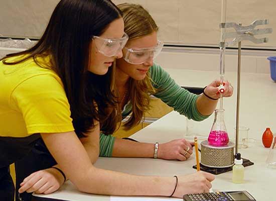 prácticas para estudiantes universitarios